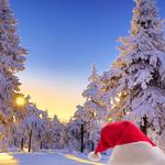 Поздравление с Рождеством по электронной почте, открытки 252